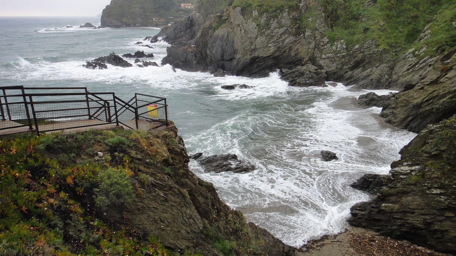 Méditerranée 2016 : des criques de Porteils à Collioure