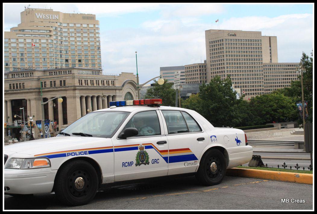 Voiture de police et bus de ramasage