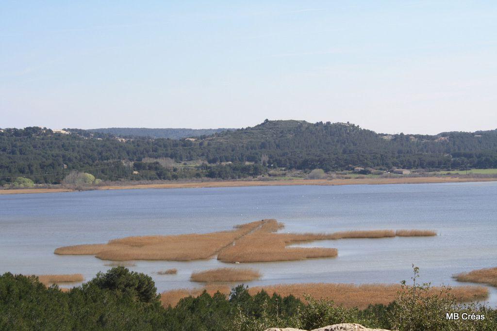 L'étang du Pourra