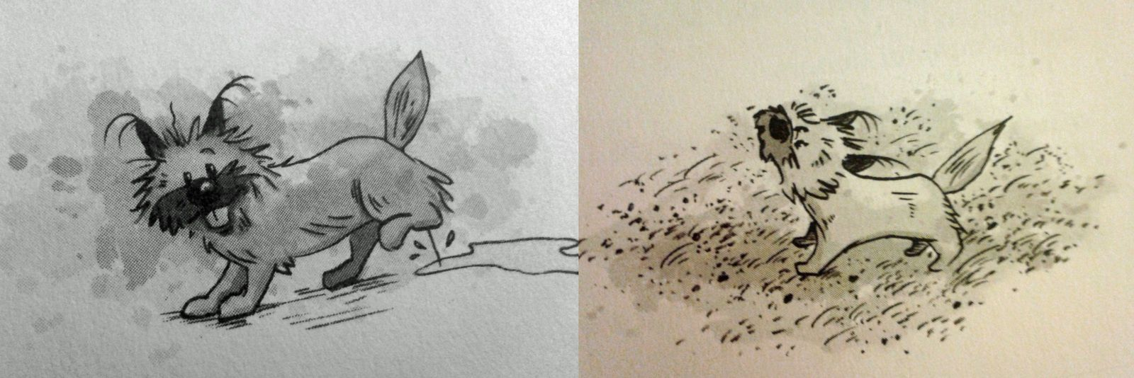 le chat Tête de Fesses / l'écureuil qui fait hi hi / Fleur (c'est elle que je préfère)