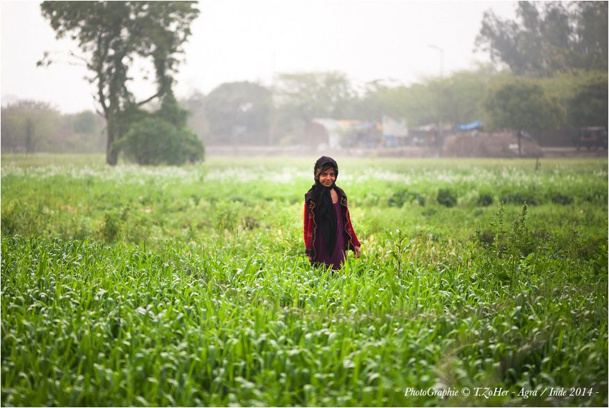 *PhotoGraphie © T.ZoHer - Agra / Inde 2014 -