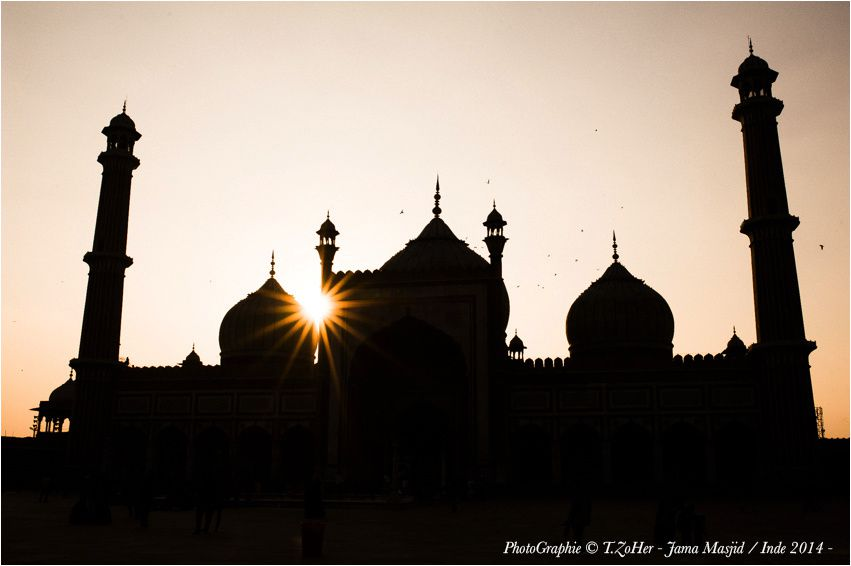 *PhotoGraphie © T.ZoHer - Jama Masjid / Inde 2014 -