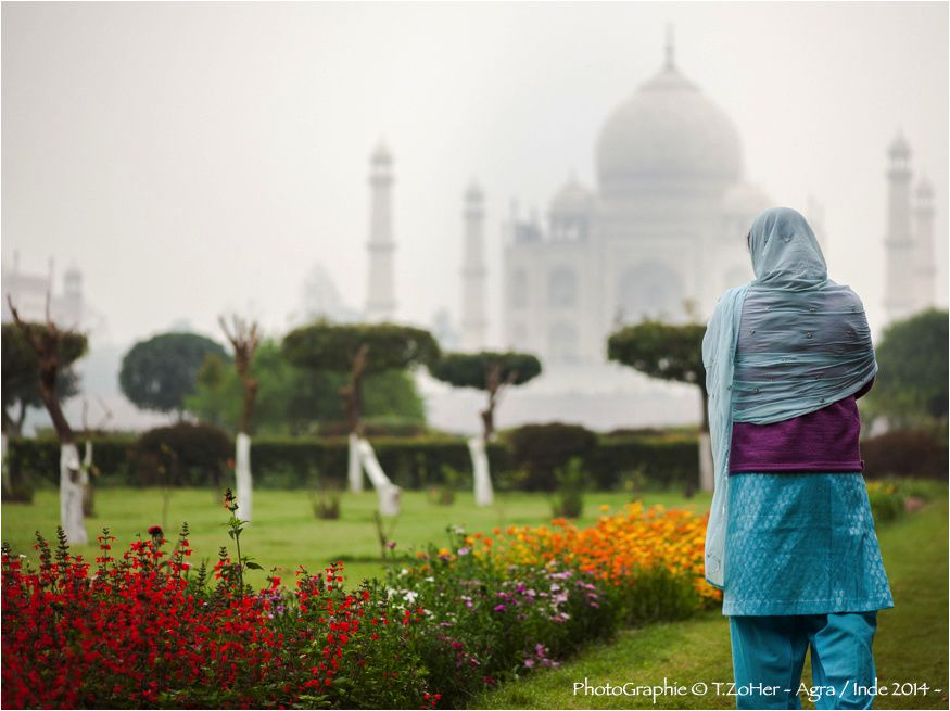 *PhotoGraphie © T.ZoHer - Mehtab Bagh / Agra / Taj Mahal / Inde 2014 -