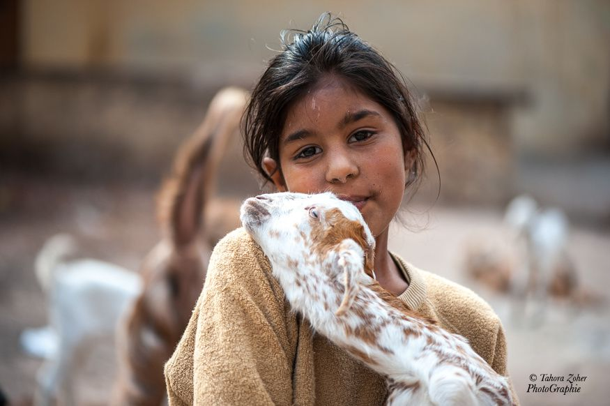 © T.Zoher PhotoGraphie - Jaipur / Inde 2014 -