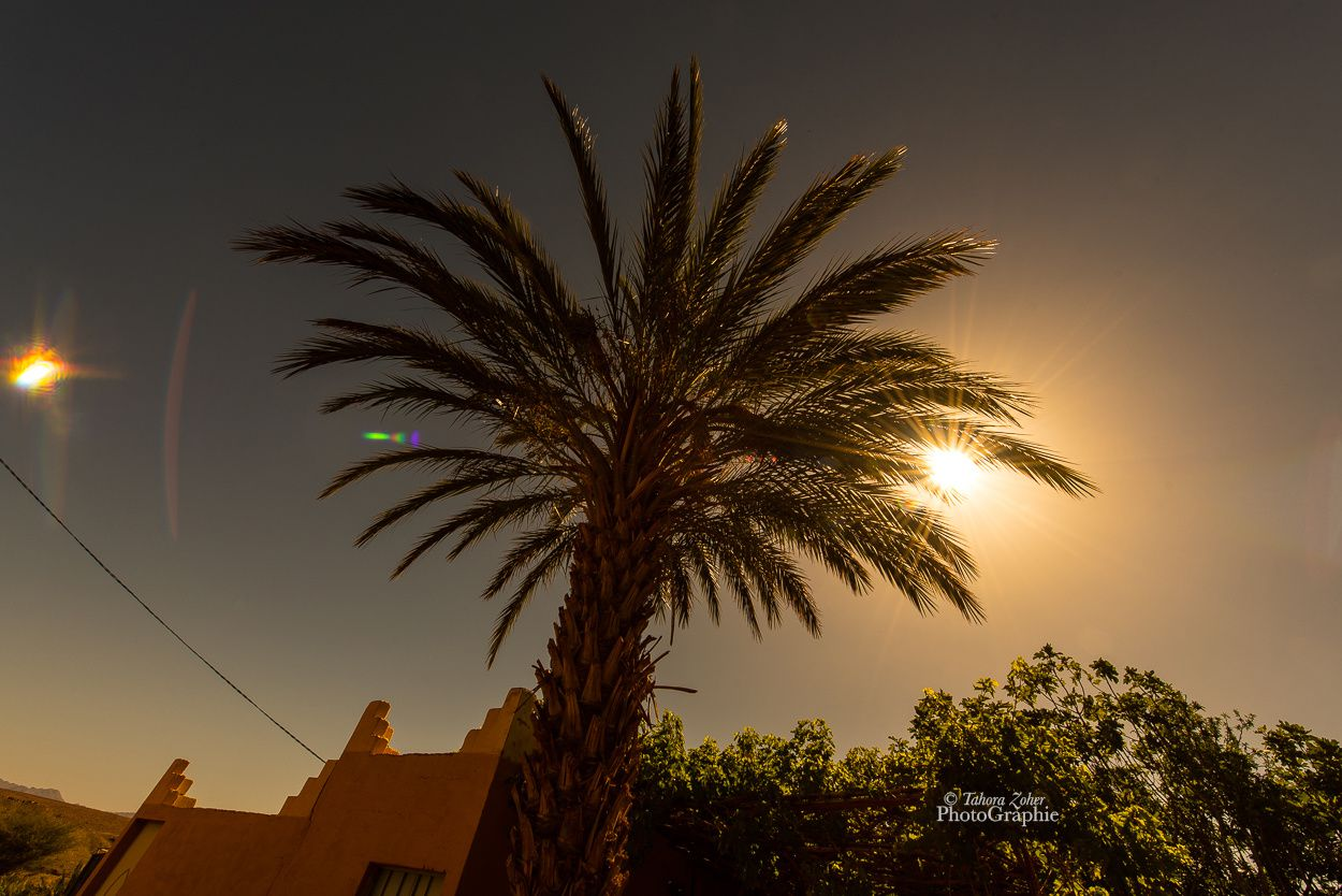 © Tahora Zoher PhotoGraphie - Maroc 2017 -