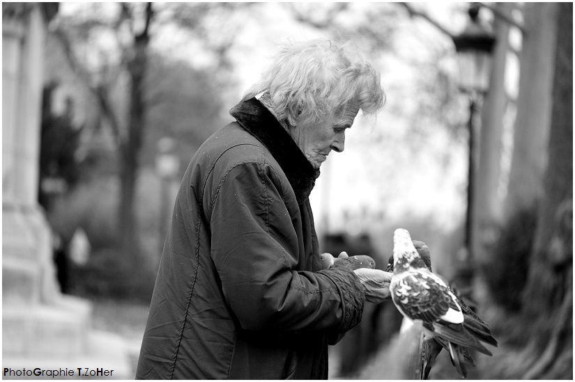 *PhotoGraphie T.Zoher - La dame aux pigeons -
