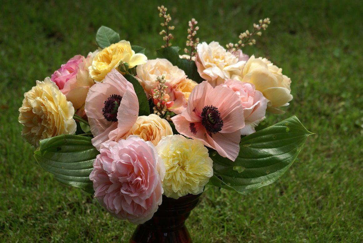 Bouquet Libre de droit