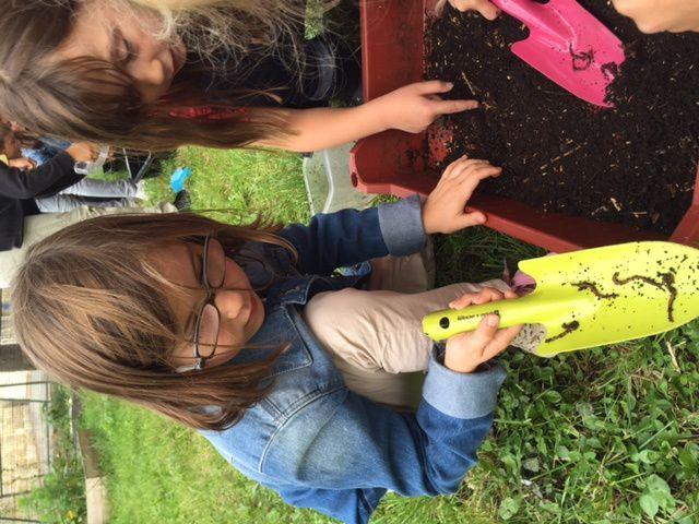 Ateliers jardinage mis en place à l'école avec l'APEL