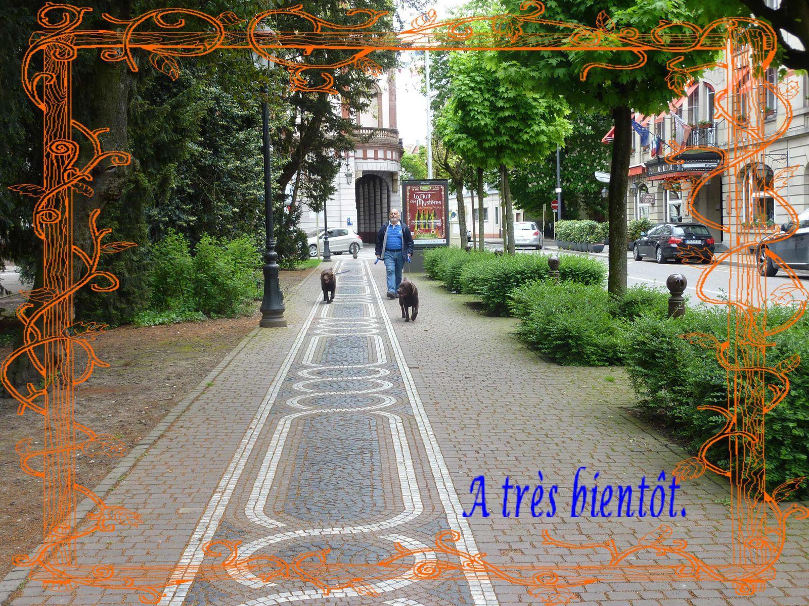 Promenade dans Mulhouse.