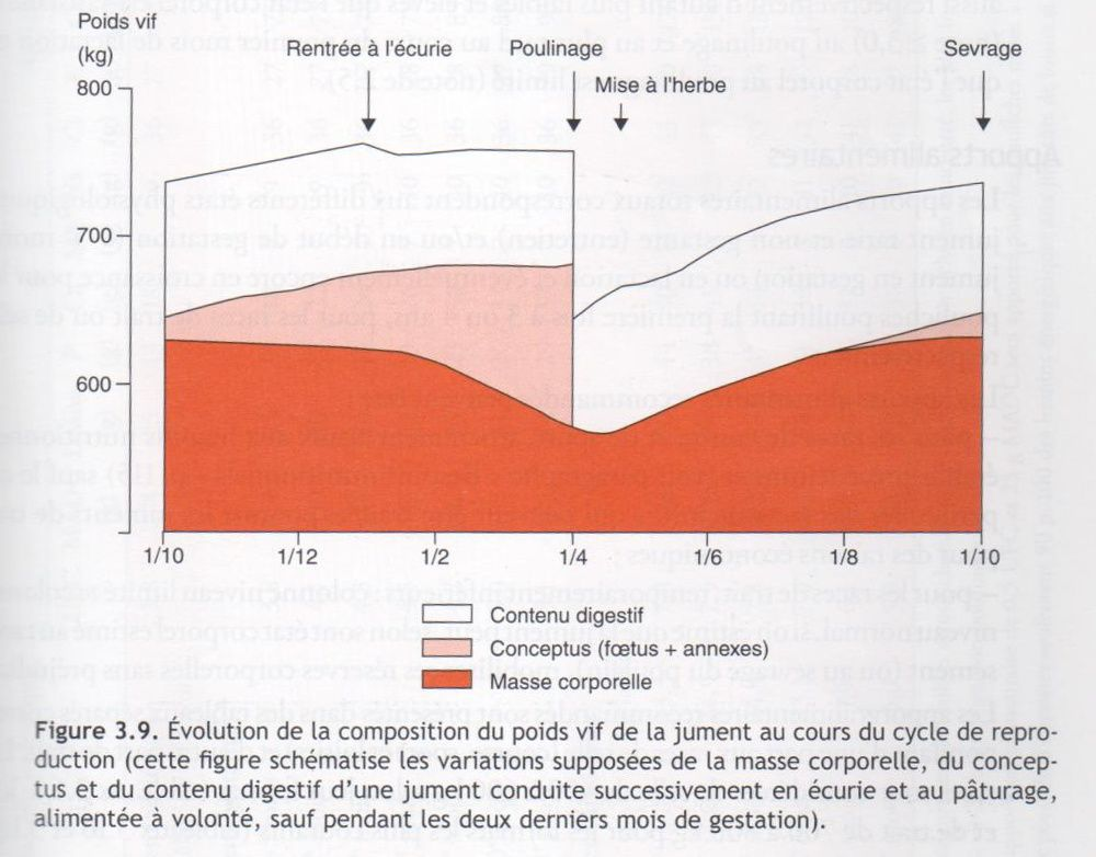Nutrition et alimentation des chevaux, Martin-Rosset coord, INRA 2012