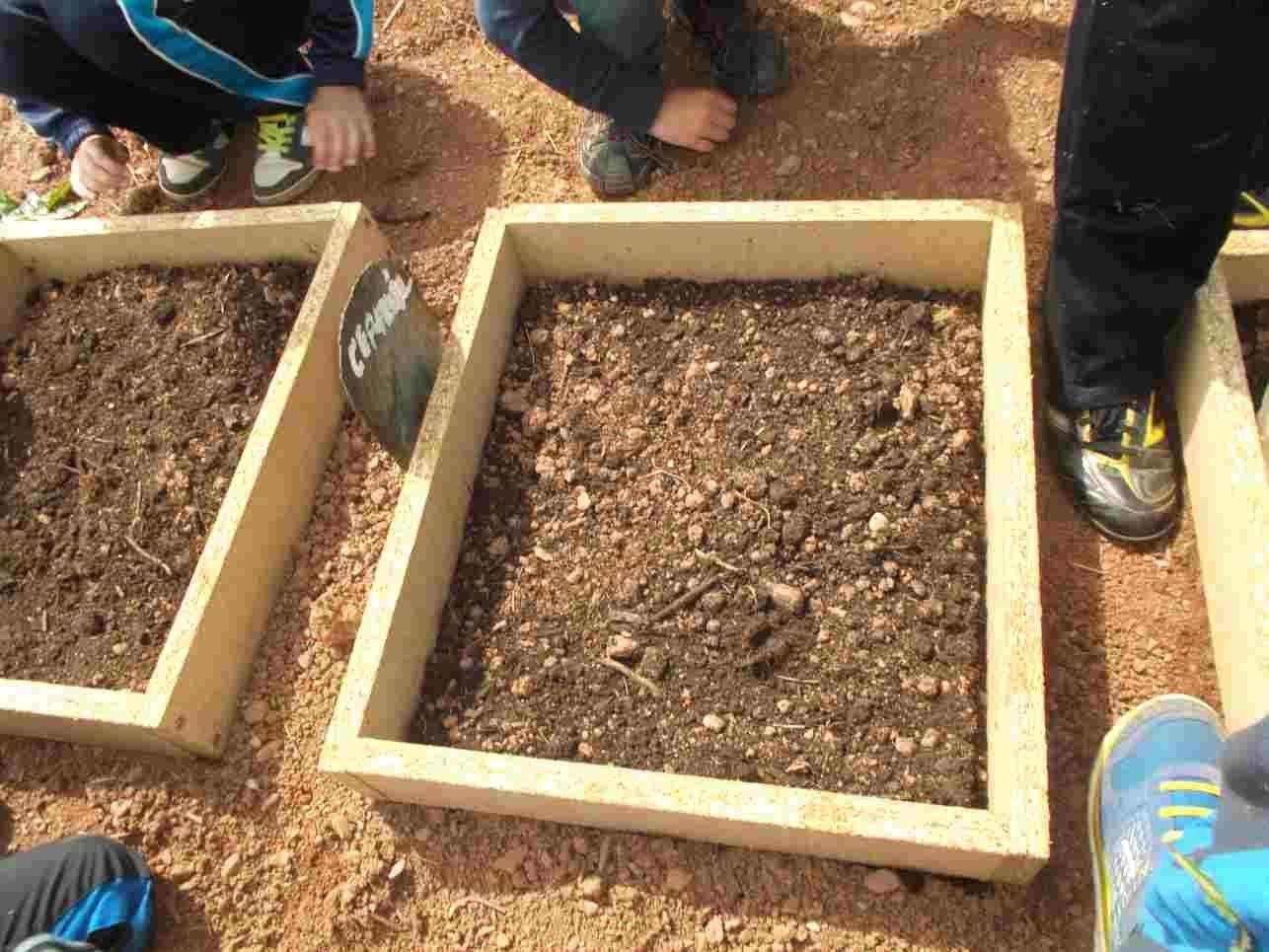 Pour terminer, nous avons semé des plantes annuelles: persil, coriandre, aneth, cerfeuil et basilc.