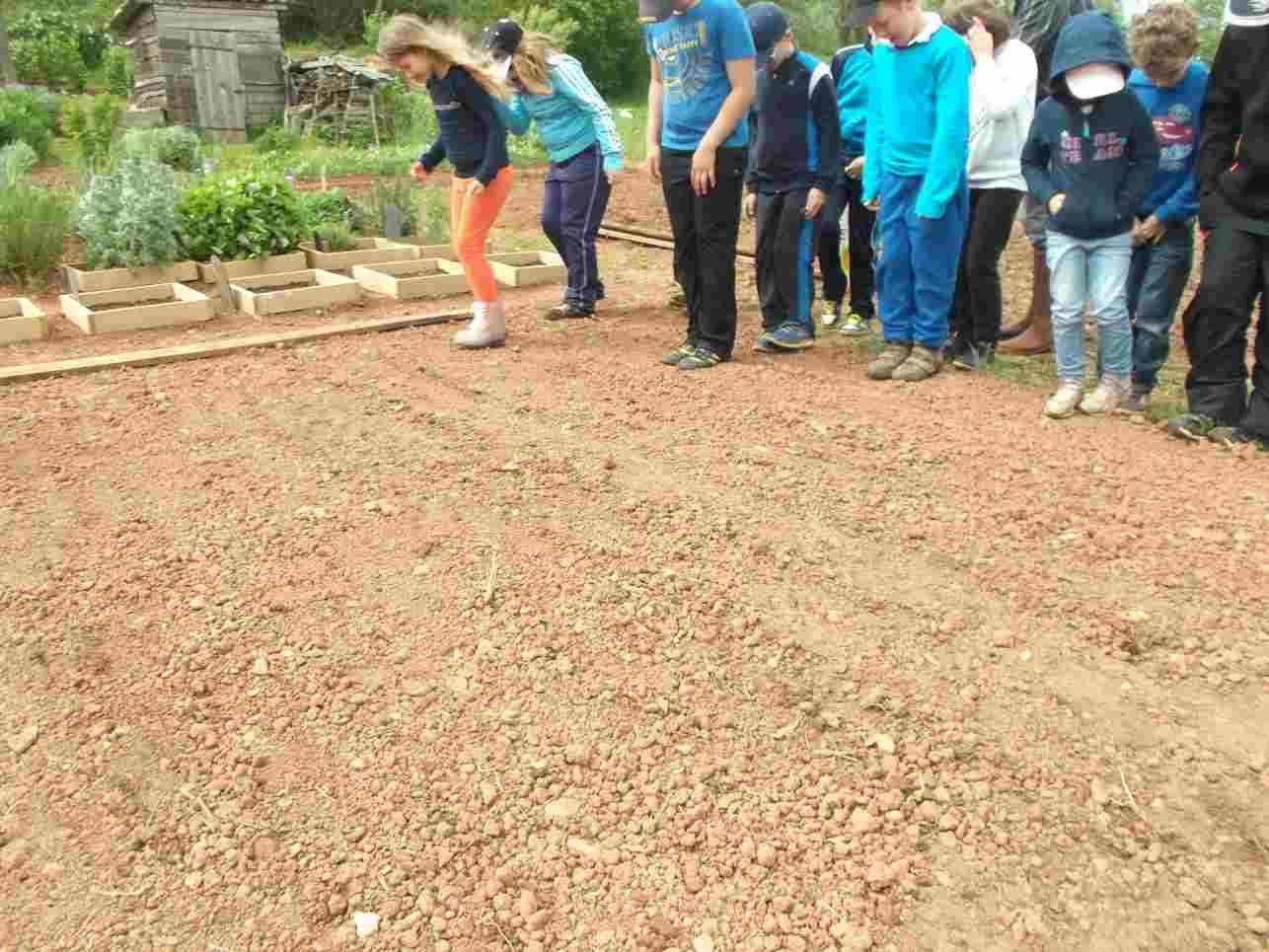 Puis avec mamie Jackie, nous avons semé, enterré et arrosé notre prairie fleurie pour les abeilles.