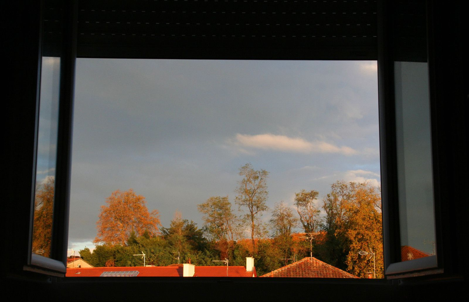 Les saisons au réveil : 4 L'automne