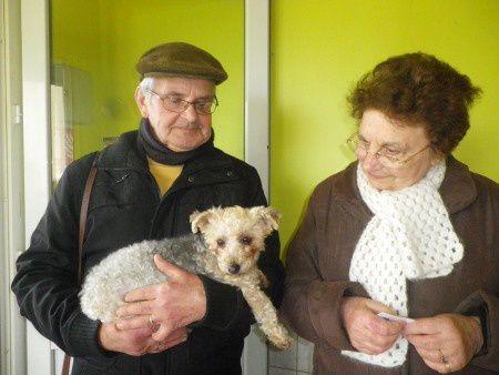 DAISY adoptée le 17-01-14.