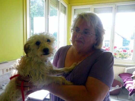 LOLA adoptée le 08-09-14.