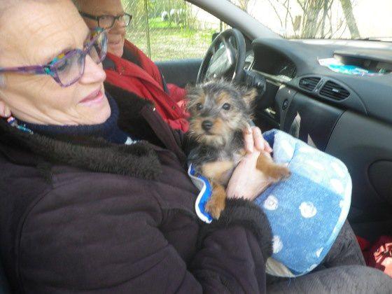 LISA adoptée le 27-03-15.