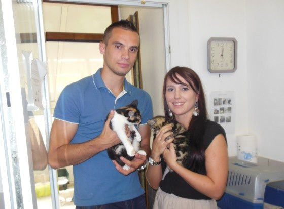 Chatons adoptés le 08-08-15.