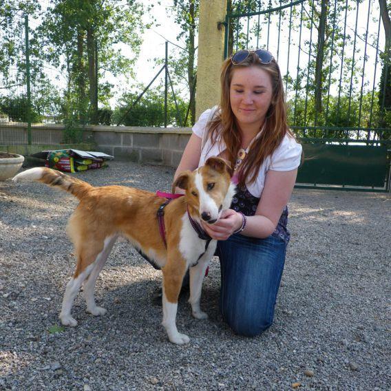 ELFIE adoptée le 21-04-2011.