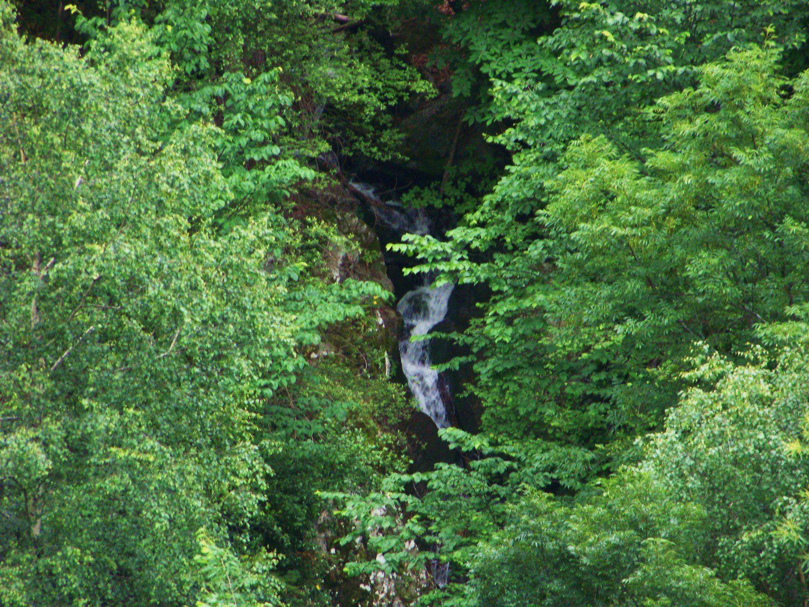 la montagne: la forêt, la vierge sur le chemin; l'abbaye et ses dépendances;dans l'abbaye une petite vierge toute seulette avec son ptiot, salut biquette