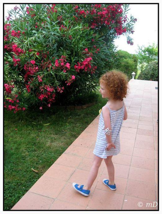 Lauriers roses et althéas au jardin