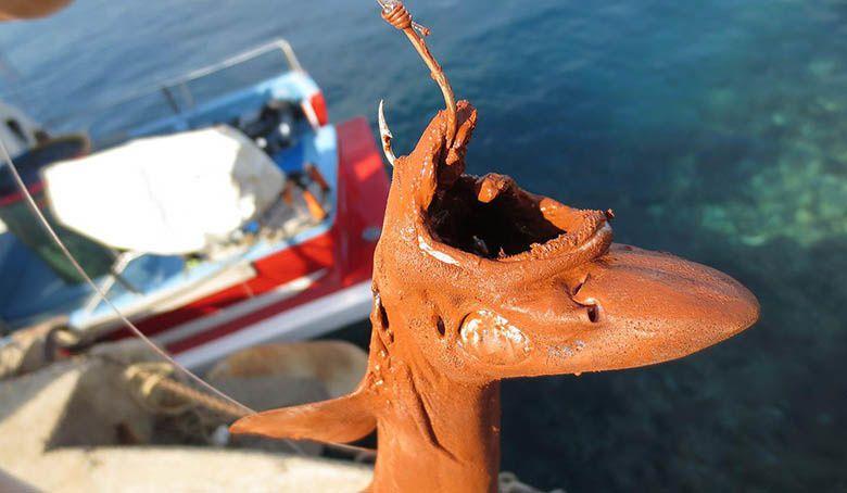 Boues rouges : Altéo continuera de déverser ses déchets toxiques en mer