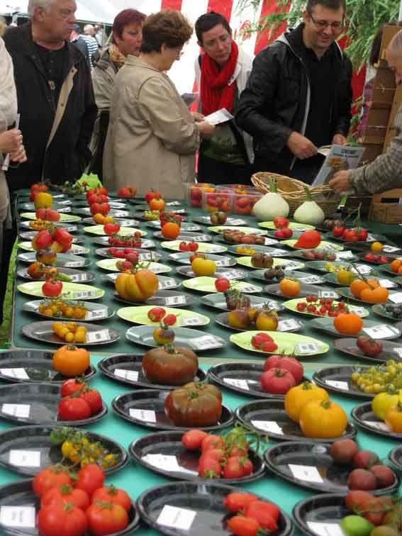 Encore plus d'exposants lors de la 2ème fête de la tomate !