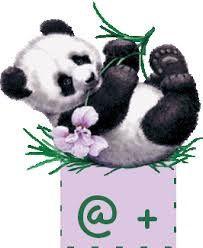 Pour Pascal qui m'a envoyé ces jolies fleurs &#x3B;-)