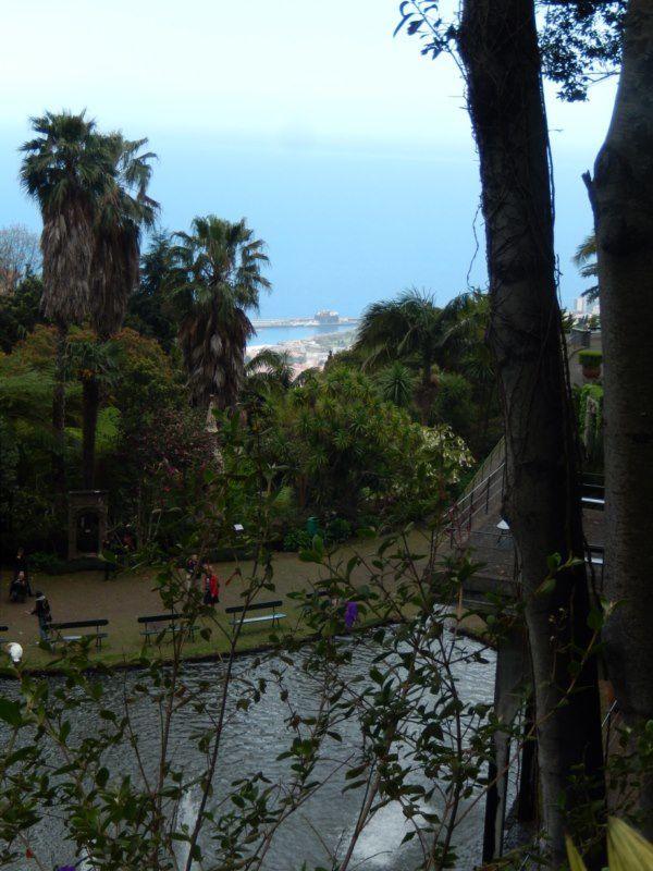 voilà le jardin tropical ... c'est fini .... mais avant de redescendre par le téléférico...