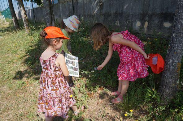 Mai-juin 2014 : Chercheurs dans l'Herbe (animations dans les écoles de Cahors)