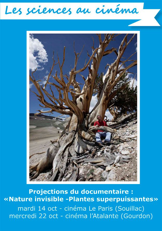&quot&#x3B;Nature invisible - Plantes superpuissantes&quot&#x3B; documentaire projeté à Souillac et Gourdon