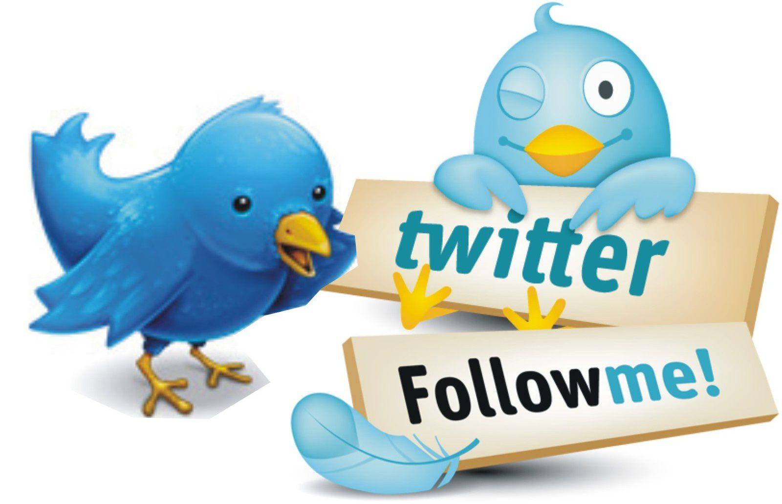 Pour nos adhérents: formation à Twitter les 26 janvier et 11 février!
