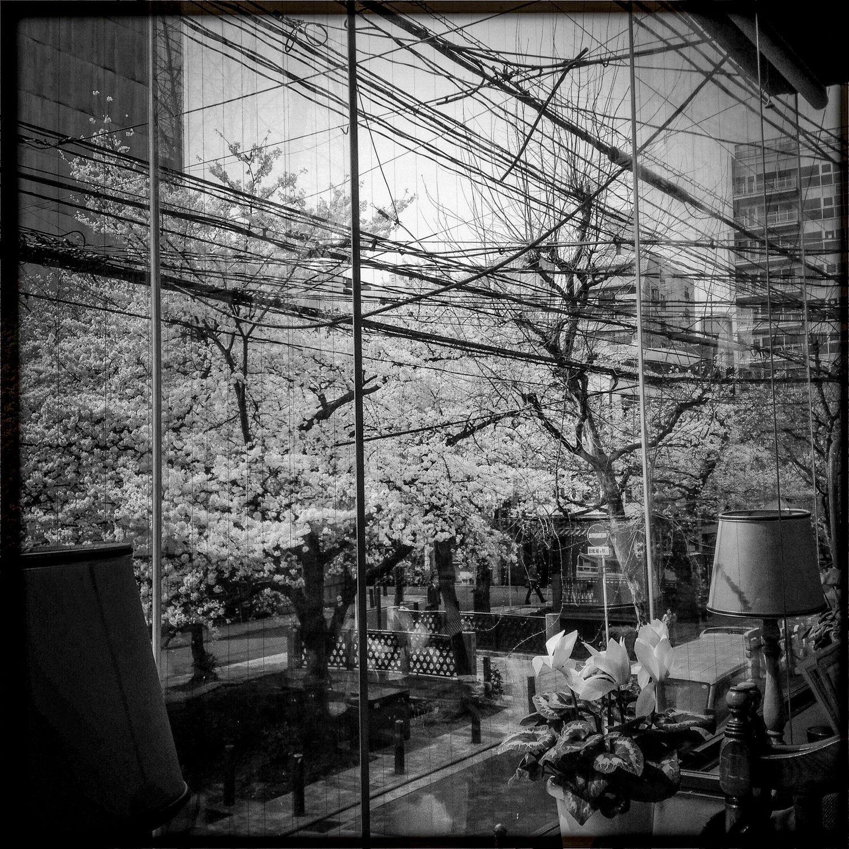 Quelques jours au japon… #13