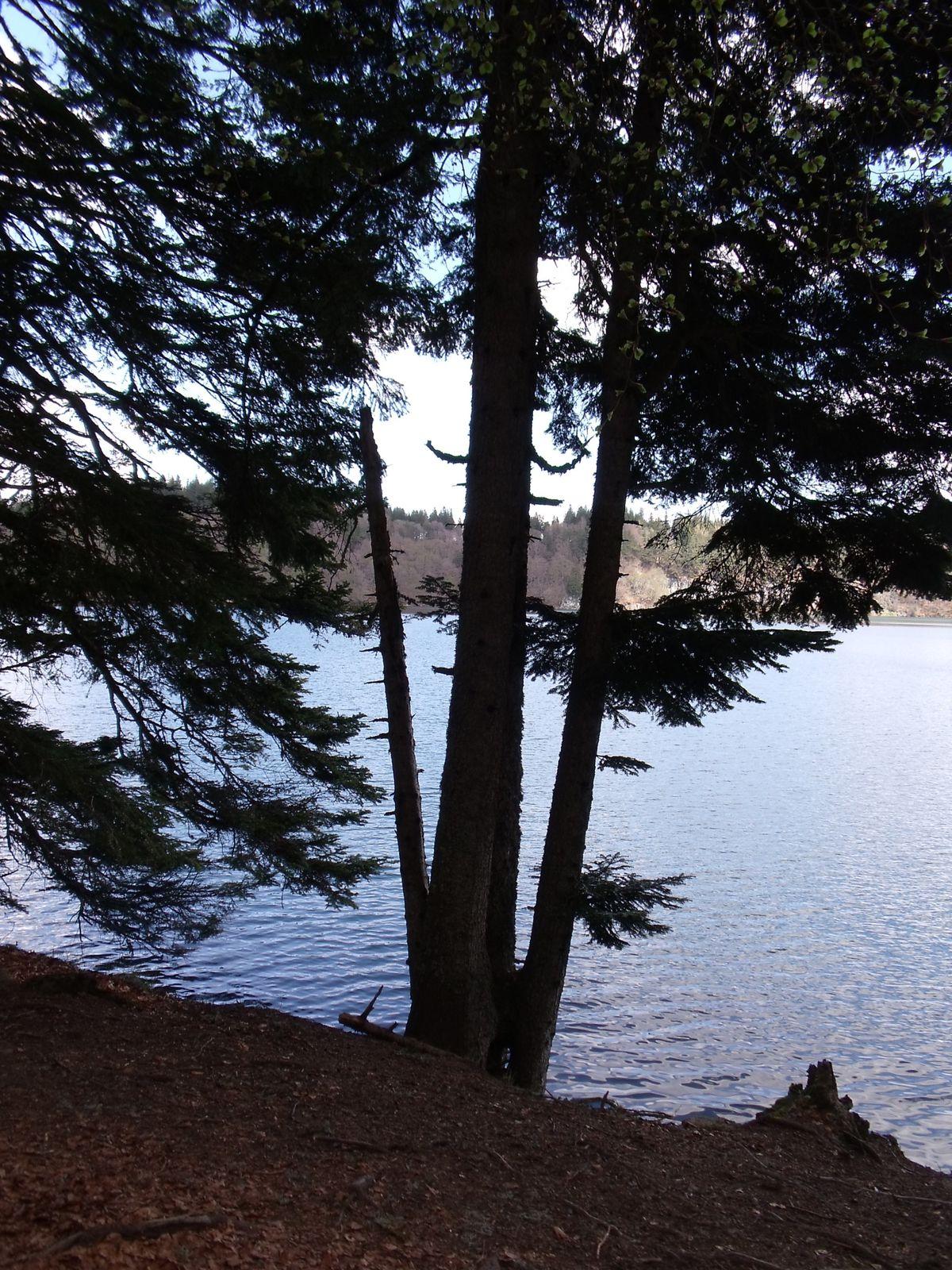 Auvergne - Lac Pavin