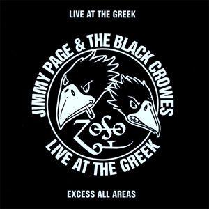 Les Black Crowes A Paris Avec Jimmy Page en Rappel 1995