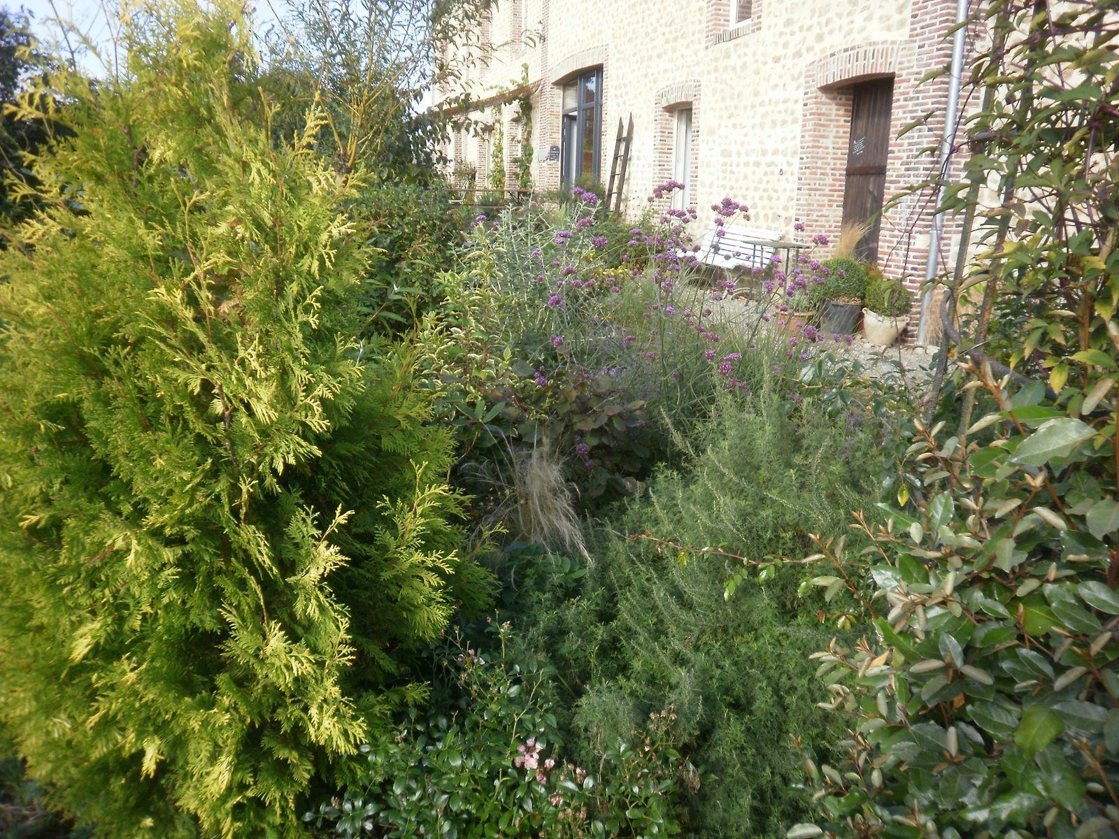 Septembre 2013 au jardin des violettes le jardin des - Table qui se replie contre le mur ...