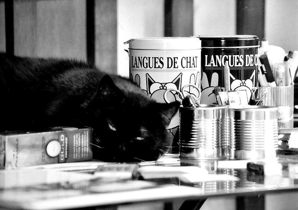 52 semaines en photo _Thème#20_Noir & Blanc