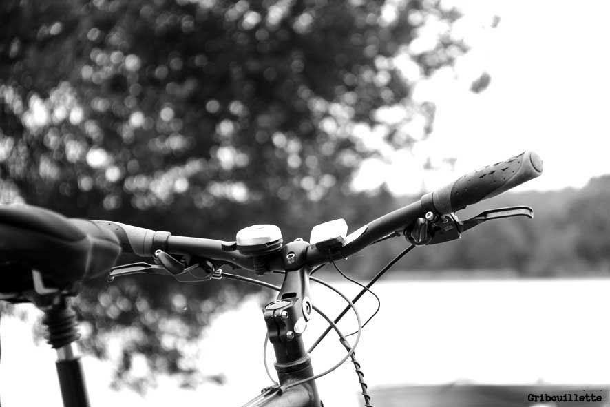 Projet 52/semaine#47/Bokeh_Détails de guidon et de moulinet