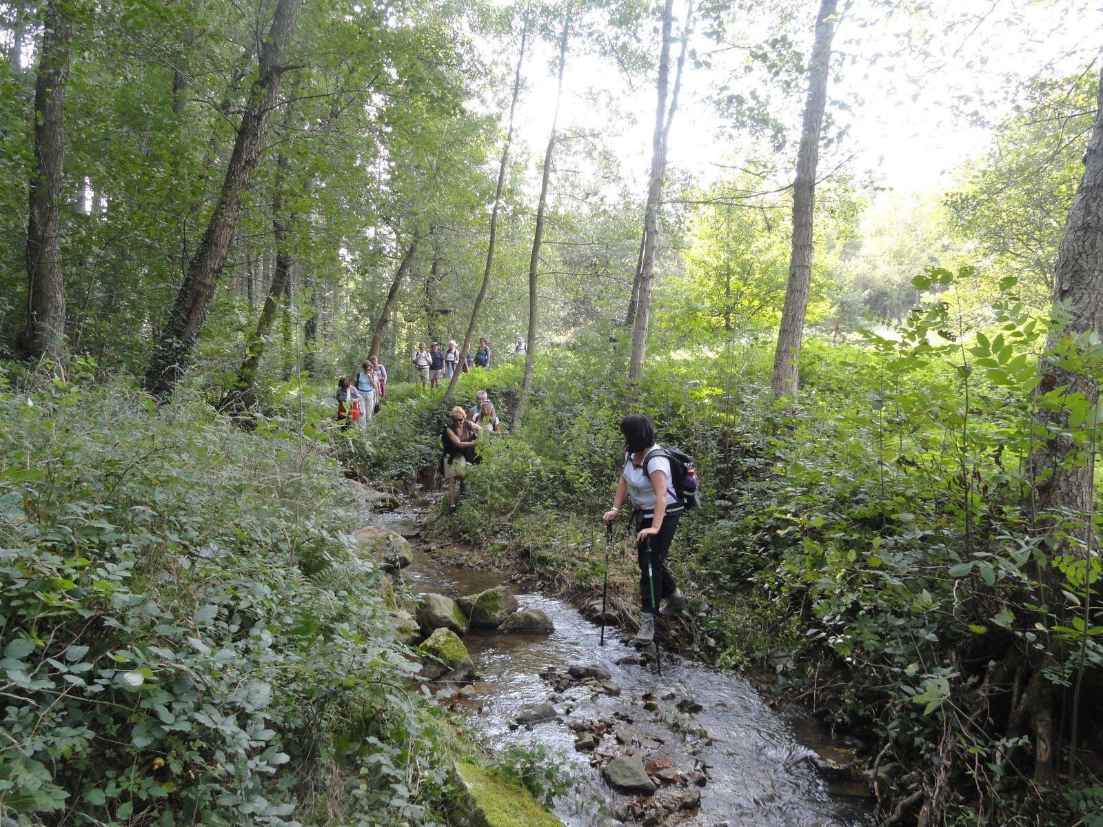 Passage dans le petit ruisseau d'Ormèze.