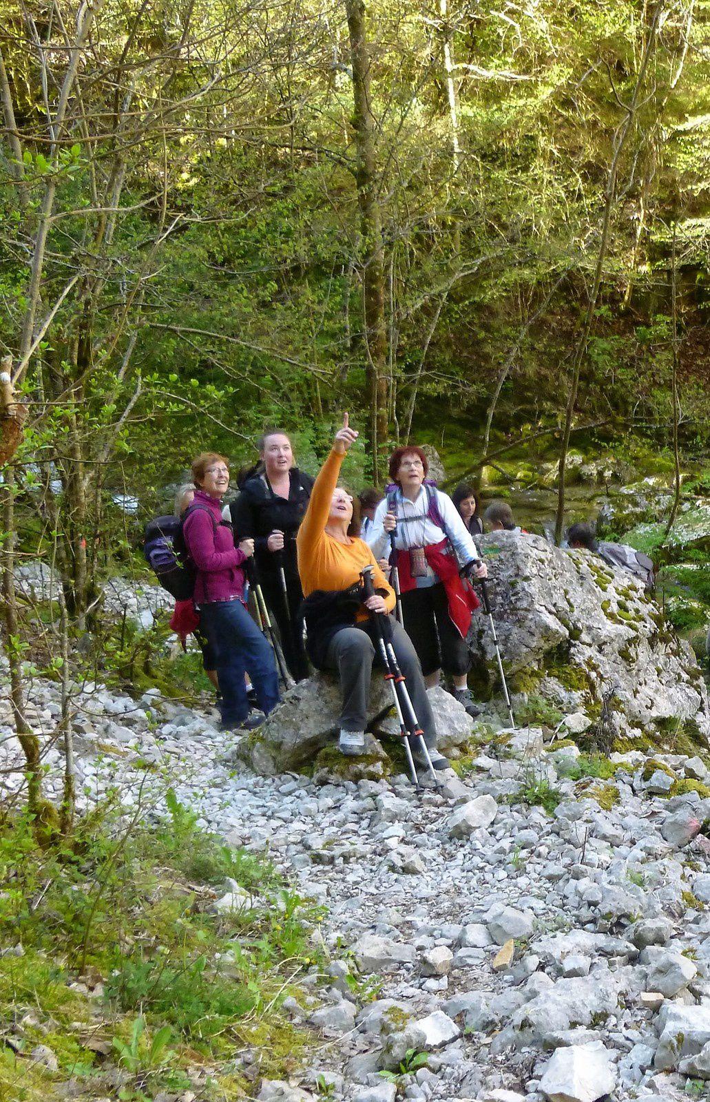 Lisbeth  montre la petite route de Malleval taillée dans la roche tout en haut de la falaise.