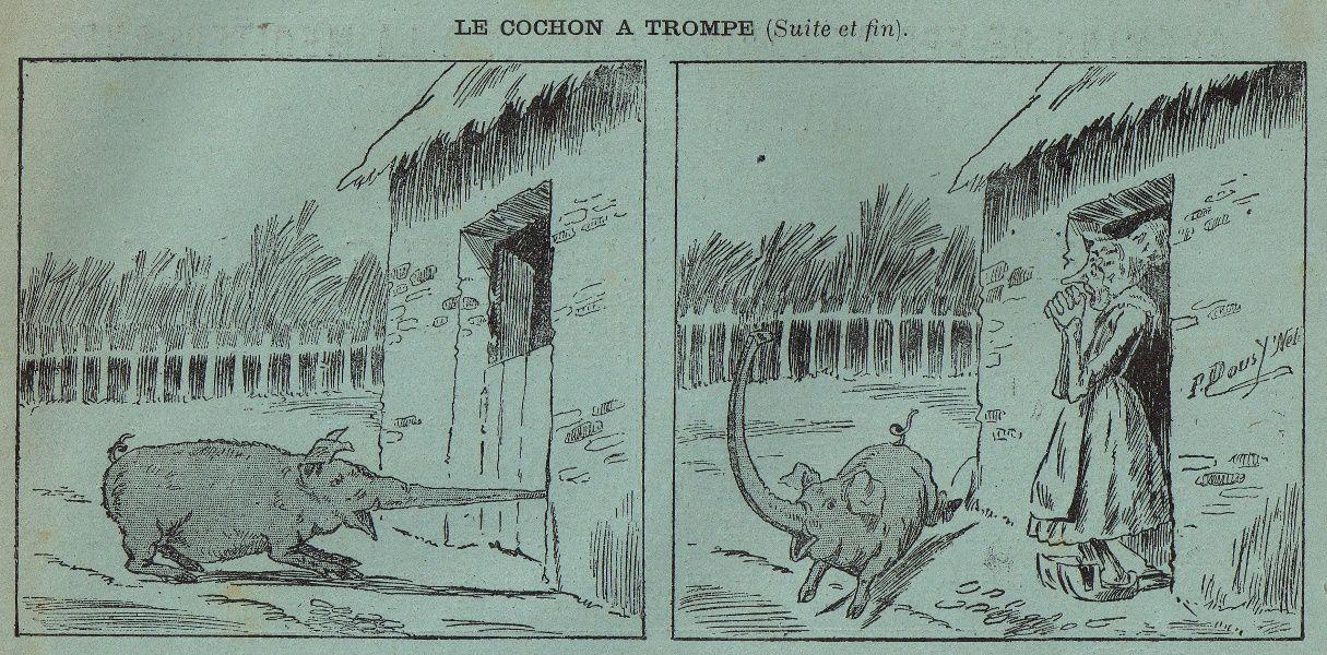 """""""Le cochon à trompe"""" in Le Magasin Pittoresque du 15 février 1897"""