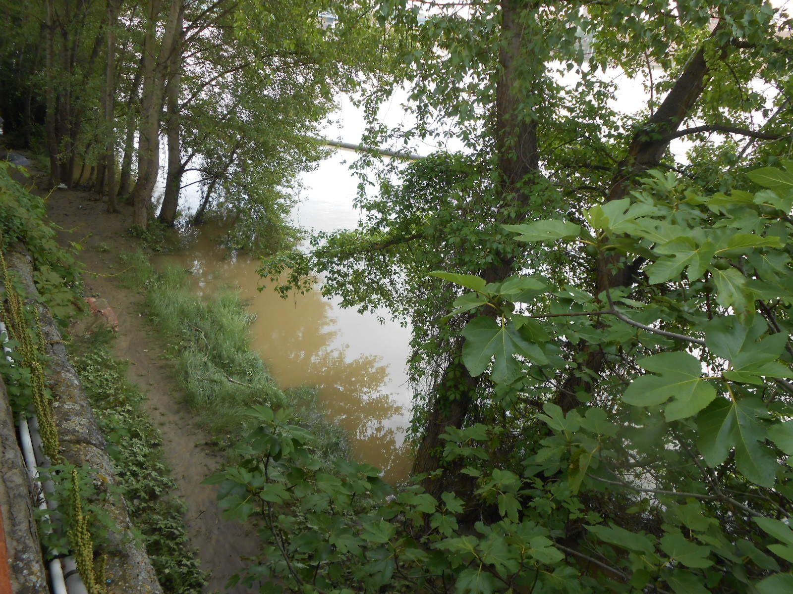 La Garonne déborde (2)