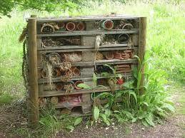 Habitat pour insecte