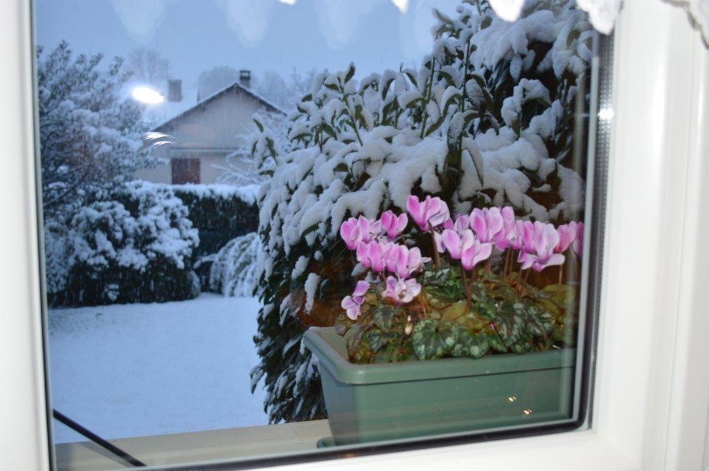 A t-il neigé chez vous ?