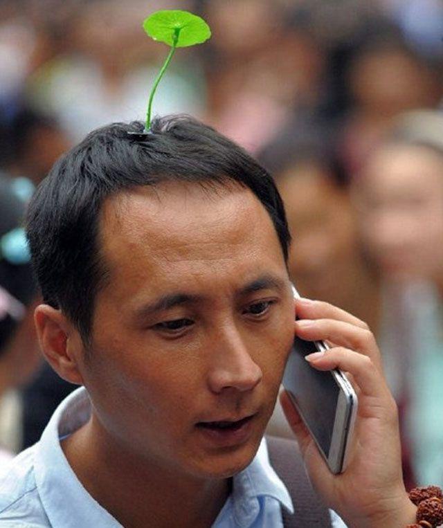 La mode des fausses plantes qui poussent sur la tête