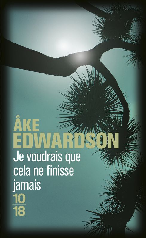 Je voudrais que cela ne finisse jamais, de Åke Edwardson - 2