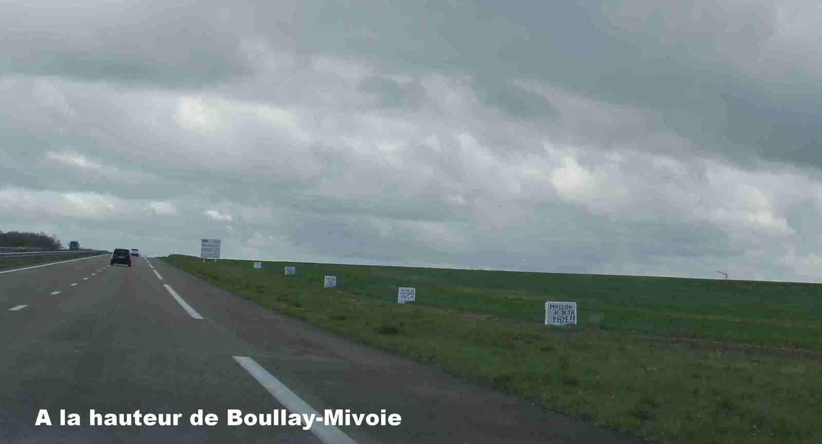 Les panneaux poussent dans les champs