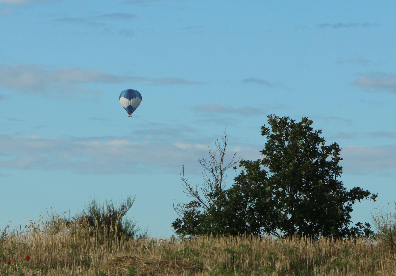 Tôt le matin, quand le vent est très faible à nul, on peut voir les montgolfières dériver vers le sud.