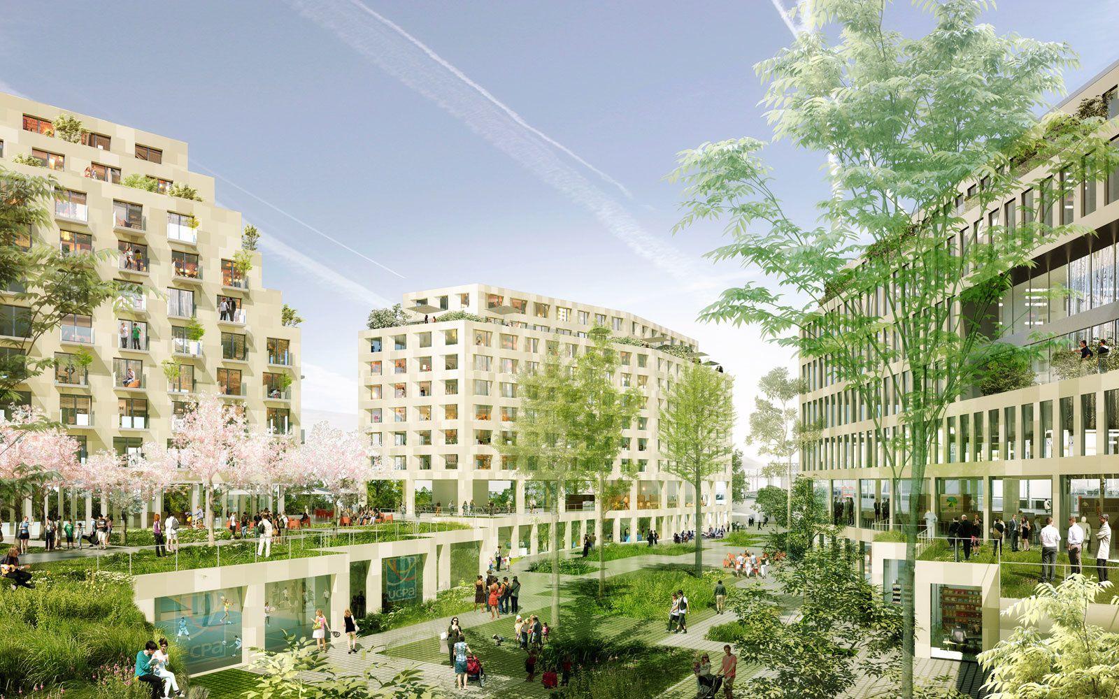 Projet de l'îlot fertile  -  Visuel TVK