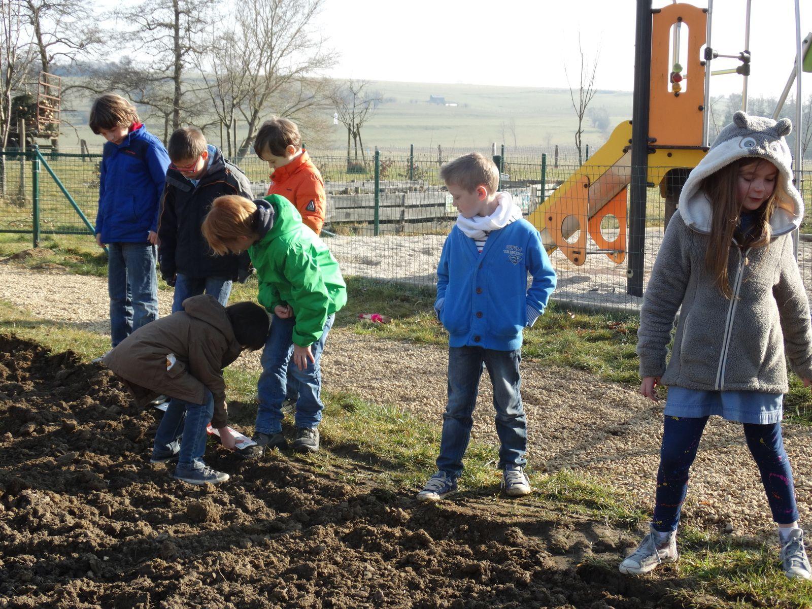 Projet biodiversité- mars 2015