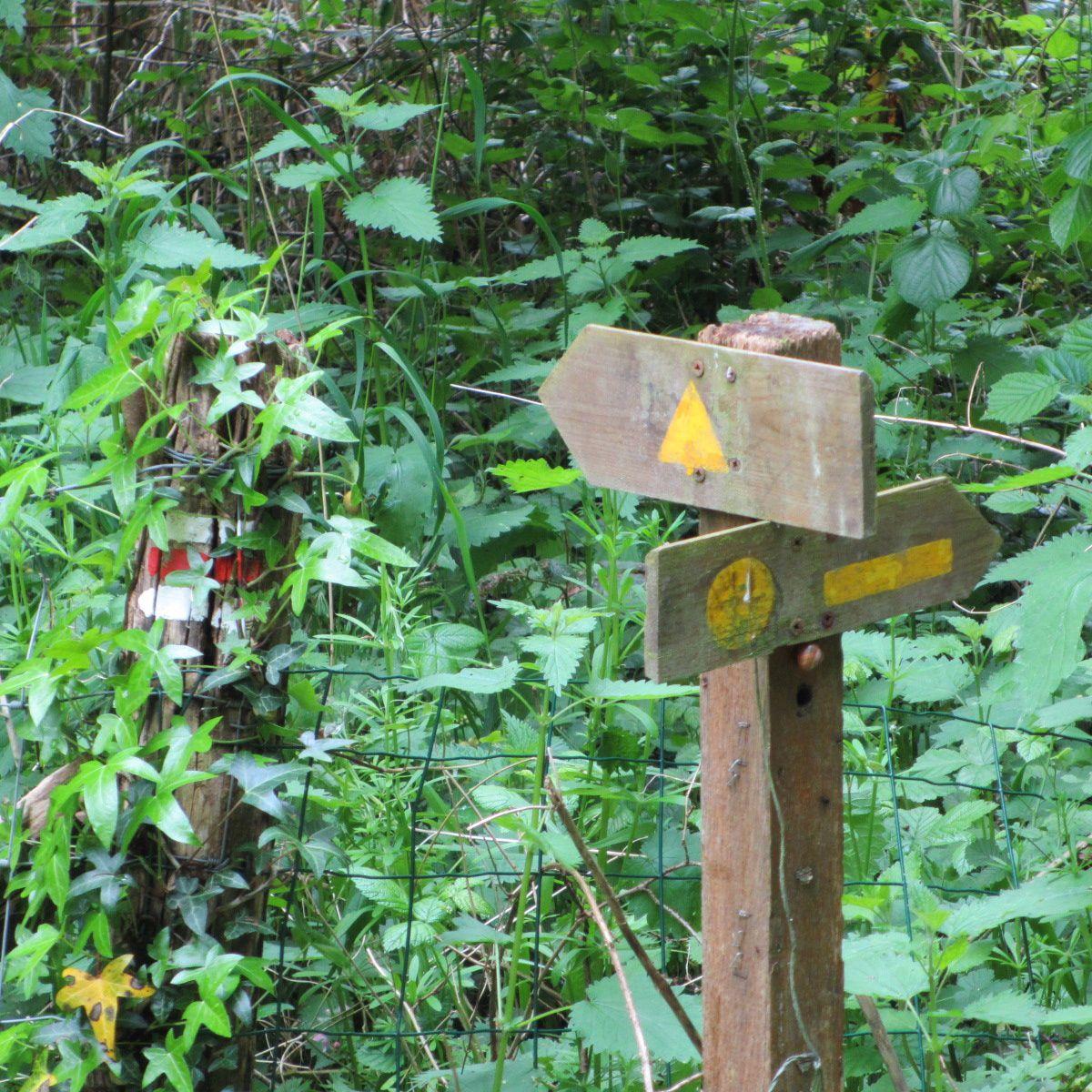 La signalétique y est confuse, hasardeuse et souvent cachée par la végétation sans indication écrite.